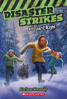 Blizzard Night (Disaster Strikes #3) Cover Image