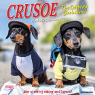 Crusoe the Celebrity Dachshund 2021 Wall Calendar (Dog Breed Calendar) Cover Image