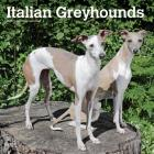 Greyhounds, Italian 2020 Square Cover Image