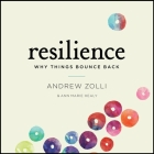 Resilience Lib/E: Why Things Bounce Back Cover Image