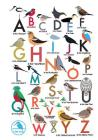 I Like Birds: An Alphabet of Birds Address Book Cover Image