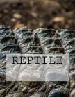 Reptile Cover Image