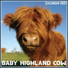 Baby Highland Cow Calendar 2021: Official Baby Highland Cow Calendar 2021, 12 Months Cover Image