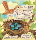 Outside Your Window: A First Book of Nature Cover Image