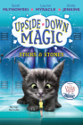 Sticks & Stones (Upside-Down Magic #2) Cover Image
