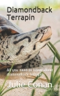 diamondback terrapin: All you need to know about diamondback terrapin Cover Image
