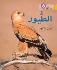 Collins Big Cat Arabic – Birds: Level 9 Cover Image