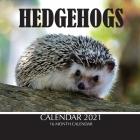 Hedgehogs Calendar 2021: 16 Month Calendar Cover Image