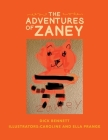 The Adventures of Zaney Cover Image