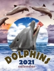Dolphins 2021 Calendar Cover Image