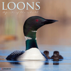 Loons 2021 Wall Calendar Cover Image