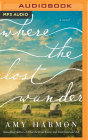 Where the Lost Wander Cover Image