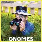 Gnomes Calendar 2021: Official Gnomes Calendar 2021, 12 Months Cover Image
