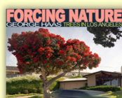 Forcing Nature: Tree in Los Angeles Cover Image