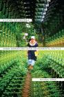 A Future for Amazonia: Randy Borman and Cofán Environmental Politics Cover Image