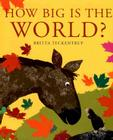 How Big Is the World? Cover Image