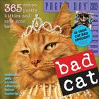 Bad Cat Page-A-Day Calendar 2009 Cover Image