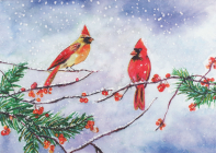 Cardinals & Berries Deluxe Boxed Holiday Cards Cover Image