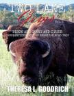 Two Lane Gems, Vol. 2: Bison are Giant and Other Observations from an American Road Trip Cover Image
