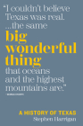 Big Wonderful Thing: A History of Texas Cover Image
