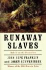 Runaway Slaves: Rebels on the Plantation Cover Image