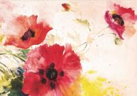 Note Card Watercolor Poppies Cover Image