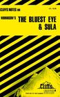 CliffsNotes on Morrison's The Bluest Eye & Sula Cover Image
