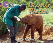 Elephant Rescue (Collins Big Cat Progress) Cover Image