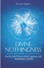 Divine Nothingness: Transcendental Paradigm Cover Image