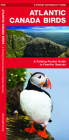 Atlantic Canada Birds: A Folding Pocket Guide to Familiar Species Cover Image