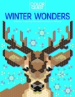 Color Quest: Winter Wonders: Extreme Color-By-Number Pictures to Reveal Cover Image