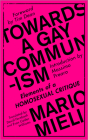 Towards a Gay Communism: Elements of a Homosexual Critique Cover Image