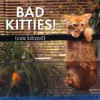 Bad Kitties Cute Kittens Cover Image
