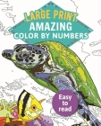 Amazing Color-By-Numbers Large Print Cover Image