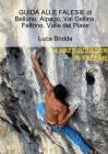 GUIDA ALLE FALESIE di Belluno, Alpago, Val Cellina, Feltrino, Valle del Piave Cover Image