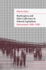 Bankruptcy and Debt Collection in Liberal Capitalism: Switzerland, 1800–1900 (Social History, Popular Culture, And Politics In Germany) Cover Image