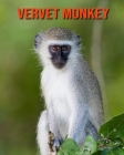 Vervet Monkey: Fun Learning Facts About Vervet Monkey Cover Image