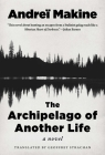 The Archipelago of Another Life: A Novel Cover Image