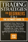 Trading Strategies for Beginners: 5 BOOKS IN 1 The Ultimate Guide to QuickStart Forex, Master Easy Strategies to Option and Swing Trading Success, Bec Cover Image