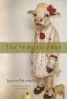 The Imaginary Age: Poems Cover Image