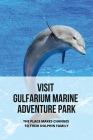 Visit Gulfarium Marine Adventure Park: The Place Makes Changes To Their Dolphin Family: New National Park Recreation Management Strategy Cover Image