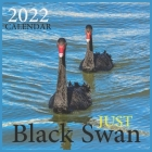 Just Black Swan CALENDAR 2022: Official Black Swan CALENDAR 2022, Cute Animal Calendar,12 Month, Office Calendar Swan Lovers, Square CALENDAR 2022 Cover Image