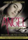 Angel (Maximum Ride #7) Cover Image