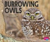Burrowing Owls Cover Image