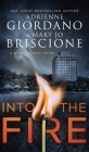 Into The Fire: A Gripping Amateur Sleuth Mystery Cover Image