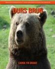 Ours Brun: Images étonnantes et faits amusants pour les enfants Cover Image