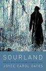 Sourland: Stories Cover Image