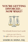 You're Getting Divorced...Now What?: The Ultimate Divorce Court Guide Cover Image