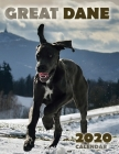 Great Dane 2020 Calendar Cover Image