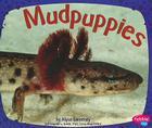 Mudpuppies Cover Image